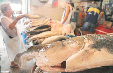 Bolivia-consume-el-doble-de-lo-que-produce-en-peces-