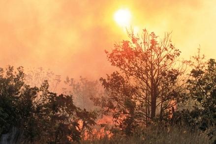 Incendios-en-comunidades-asfixian-a-Santa-Cruz-