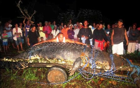 Filipinas-captura-un-cocodrilo-marino-de-seis-metros-de-largo