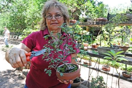 La venta de plantas un negocio que 39 florece 39 y atrae a for Plan de negocios de un vivero de plantas