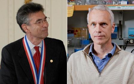 Nobel-de-Quimica-para-dos-estadounidenses-