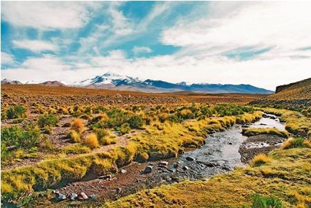 Chile--no-tiene-derecho-a-decir-nada--sobre-el-Silala