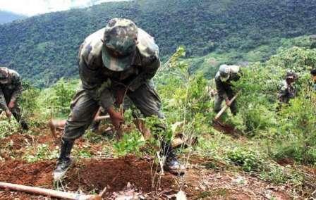 Brasil-plantea-crear-fondo-trinacional-para-fortalecer-lucha-antidroga