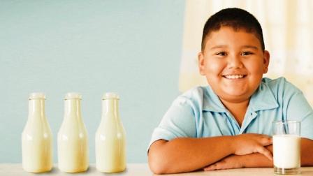 Molecula-de-la-leche--actua-contra-la-obesidad