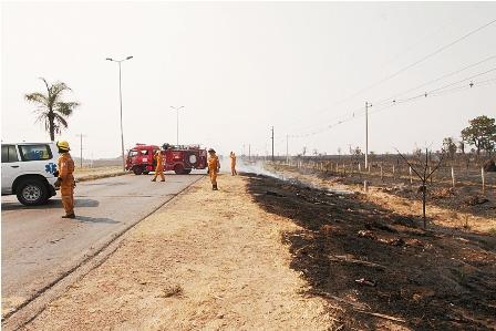 Incendio-provoca-quema-de-mas-de-20-hectareas-