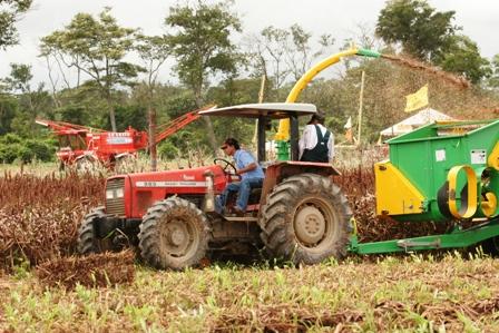 Agricultores-salen-en-defensa-de-la-biotecnologia