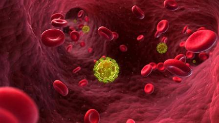Un-nuevo-avance-podria-ayudar-a-crear-una-vacuna-eficaz-contra-el-VIH--