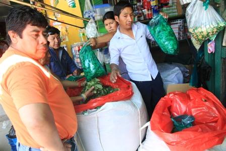 Baja-el-precio-de-licencias-para-vender-hoja-de-coca