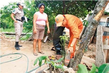 Comuna-intensifica-plan-contra-el-dengue-en-el-D12