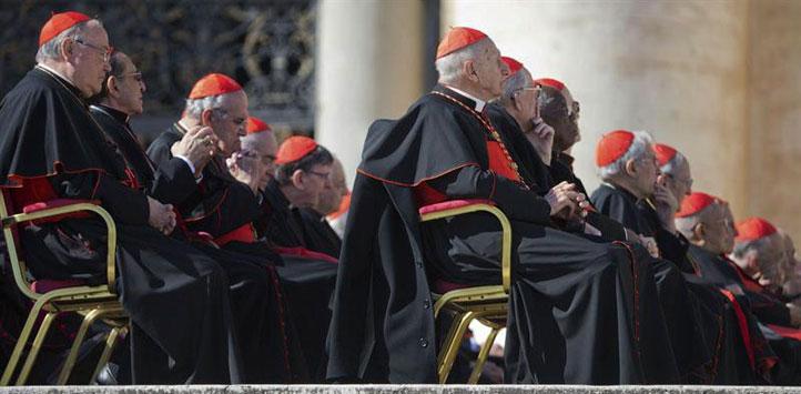 Cardenal-aleman-advierte-que-la-eleccion-del-nuevo-papa-sera-larga