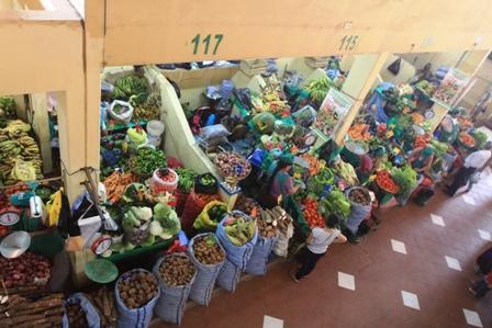 Arranco-el--Plan-Mercados-Turisticos-Ecologicos-