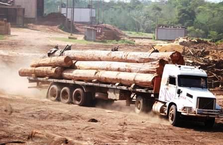 Forestales-quieren-reactivar-industria