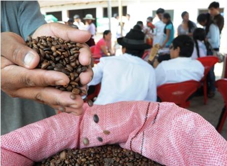 El-cafe-puede-ayudar-en-prevencion-del-Cancer