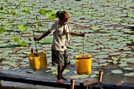 Cientificos-advierten-de-los-efectos-de-las-actividades-humanas-en-el-agua
