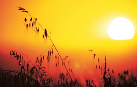 Las-olas-de-calor-seran-cada-vez-mas-fuertes-y-frecuentes-hasta-2040