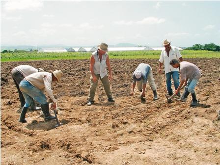 Postergan-la-realizacion-del-Censo-Agropecuario