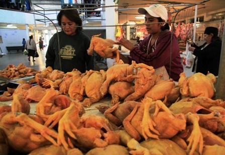 Precio-del-kilo-de-pollo-sube-hasta-Bs-16,50