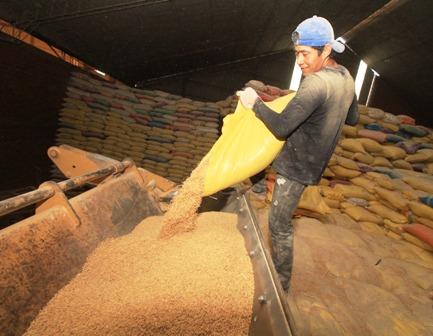 Importaran-5-mil-tn-de-arroz-integral