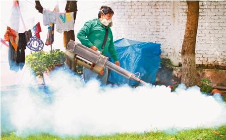 Sedes-confirma-31-casos-de-dengue-en-Santa-Cruz