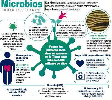 Imposible-vivir-sin-bacterias