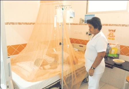 Ministerio-de-Salud-confirma-239-casos-de-dengue-en-Bolivia