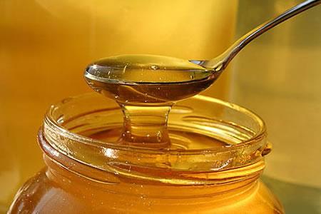 Gobierno-financiara-construccion-de-planta-procesadora-de-miel-