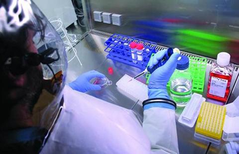 Vacuna-contra-el-ebola-muestra-resultados-prometedores-