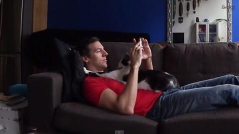 Kodi:-Un-gato-�necesitado-de-carino�-