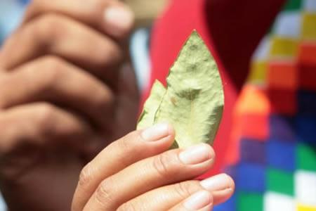 UE-apoyara-a-Bolivia-con-24-millones-de-euros-para-lucha-contra-el-narcotrafico