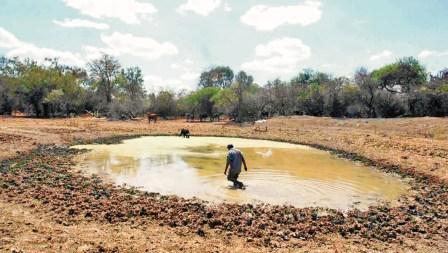 Proponen-agricultura-sostenible-para-paliar-cambio-climatico-en-el-Gran-Chaco