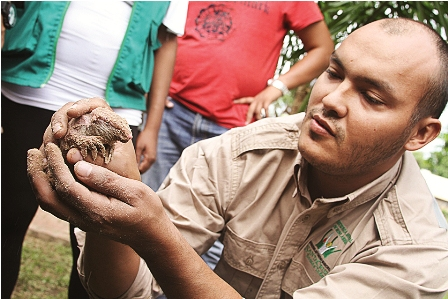 Rescatan-especie-en-peligro-de-extincion