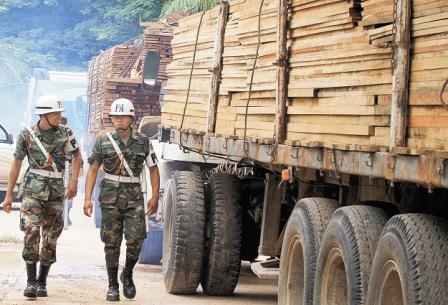 Ref. Fotografia: La ABT incautó una gran cantidad de madera ilegal