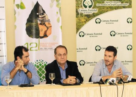 Crisis-forestal-deja-sin-empleo-a-13.500-personas