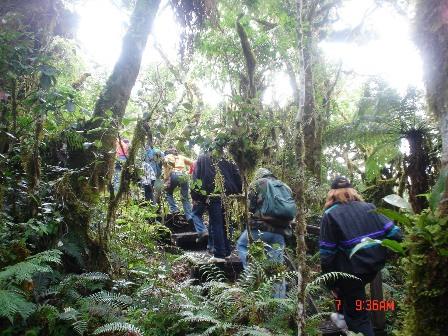 Cumbre-para-tratar-el--desarrollo,-bosque-y-agua