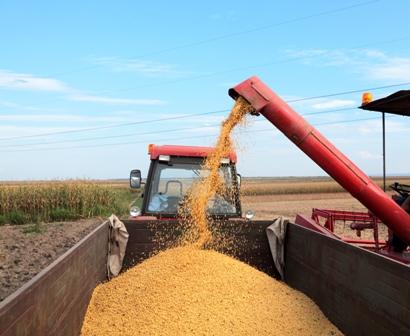 Acuerdan-incrementar-produccion-de-alimentos-