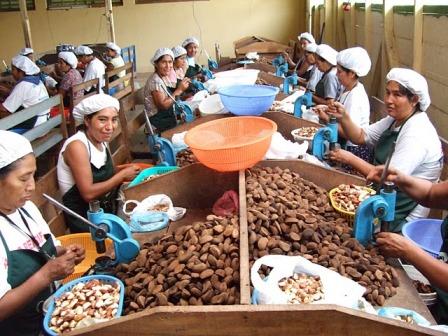 Exportacion-de-productos-del-biocomercio-crece-22%