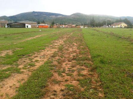Las-pistas-en-la-zona-de-los-valles-no-son-rentables