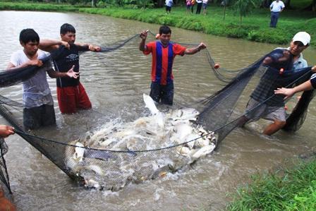 La pesca sobre la curva 2