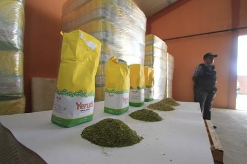 Decomisan-en-Bolivia-27-toneladas-de-coca-molida-que-iba-al-Libano-como-mate