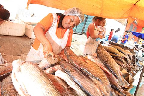 Alcaldia-fija-precios-para-la-venta-de-pescado