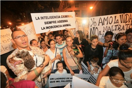 Del-Carpio-sostiene-que-las-sociedades-protectoras-impiden-el-avance-de-una-ley-de-proteccion-animal