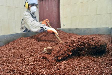 Crece-la-importacion-de-quinua-boliviana