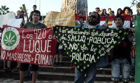 Piden-legalizar-cultivo-de-marihuana-para-combatir-narcopolitica-