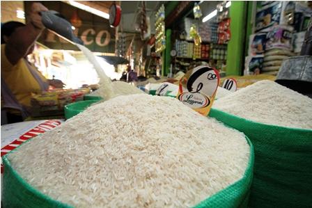 Productores-de-arroz-piden-prohibir-importacion-