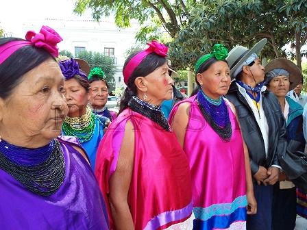 Guaranies-quieren-formar-partido-politico