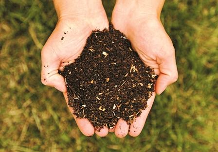 Fertilizantes--humorganicos-y-ecologicos-