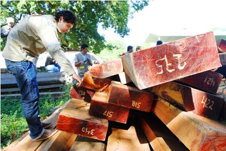 ABT-controla-el-trafico-de-madera-en-las-fronteras