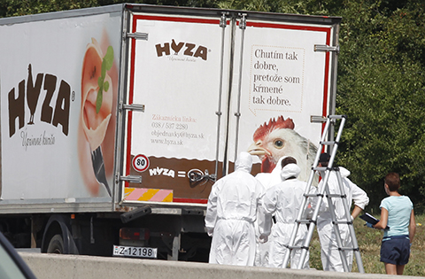 Hallan-50-refugiados-muertos-dentro-de-un-camion-en-Austria