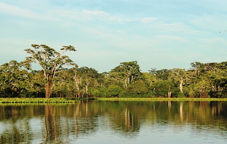 Reservorio-de-flora-y-fauna
