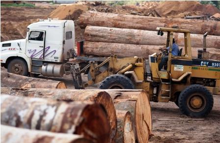 Forestales-piden-50-mil-litros-de-diesel-por-mes